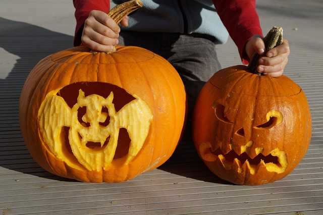 Child showing carved pumpkins